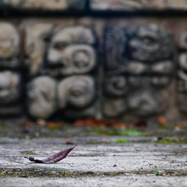 Copan dier Maya yerleimlerine oranla daha az ziyaret edilen birhellip